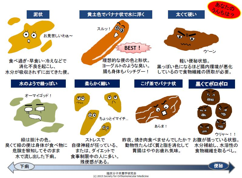 Know Your Body - (株)分子栄養学研究所 活動内容